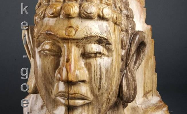 image-de-bois-pétrifié-Bouddha