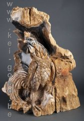 vechthaan van versteend hout