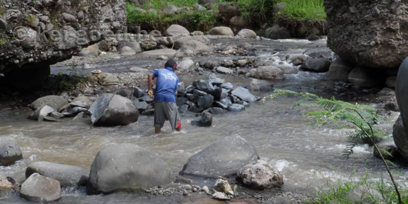 rivierstenen delfen