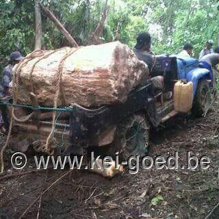 jeep transport versteend hout