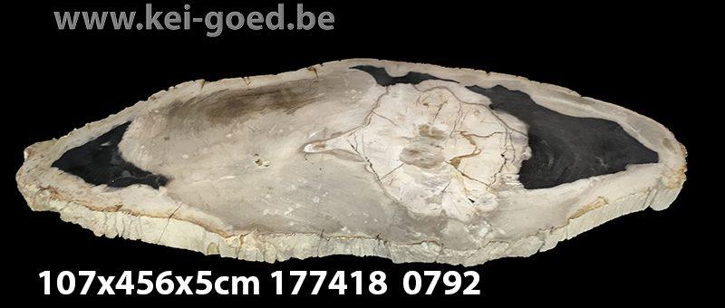 tafelblad fossiel natuursteen