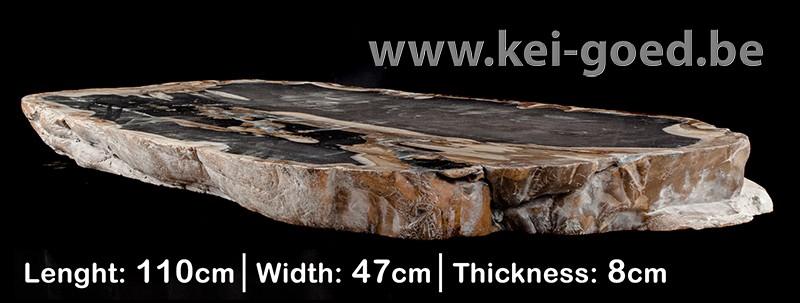 bois pétrifié fossiles de table