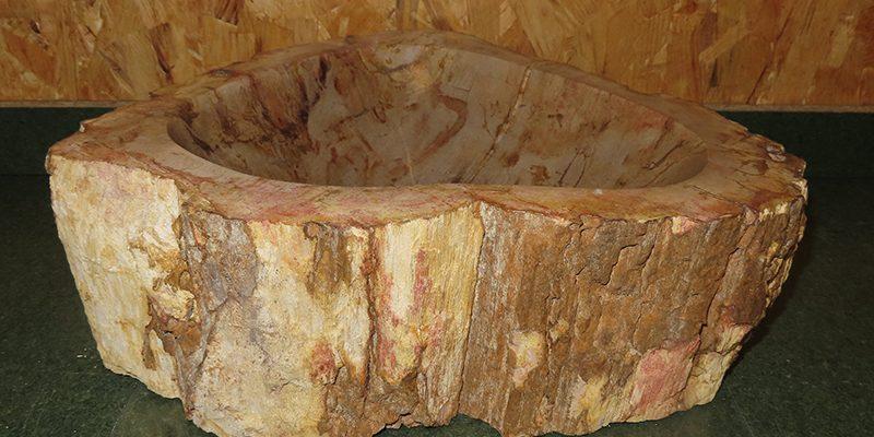 Versteend houten wasbak fossiel hout