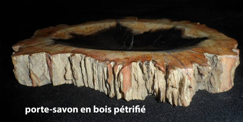 zeepbakjes van versteend hout