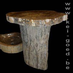 tronc d'arbre fossilisé avec plateau