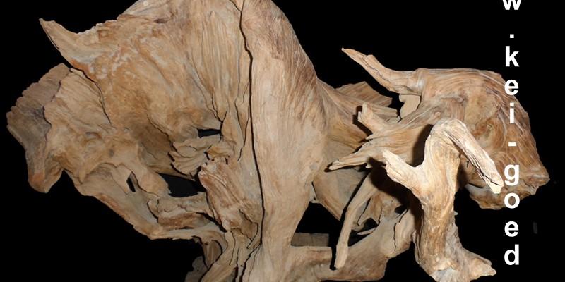 erosie hout