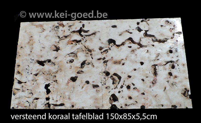 tafelblad van versteend hout