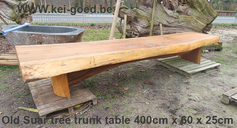Old Suar tree trunk table