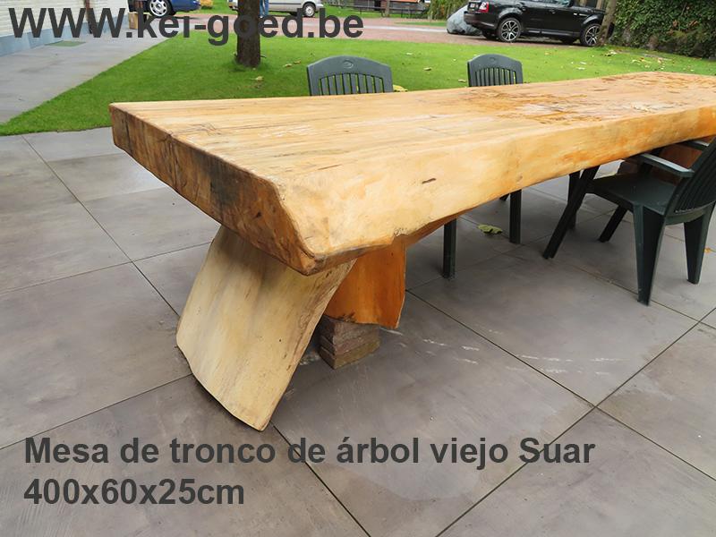 Mesa de tronco de árbol viejo Suar