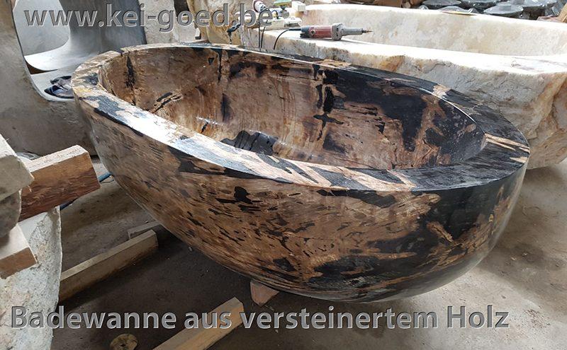 Badewanne aus versteinertem Holz