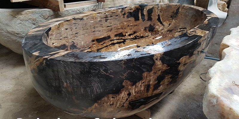 bathtub petrified wood