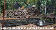 exclusieve tafelbladen van versteend hout