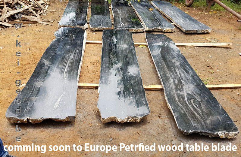 zeer exclusieve tafelbladen van versteend hout
