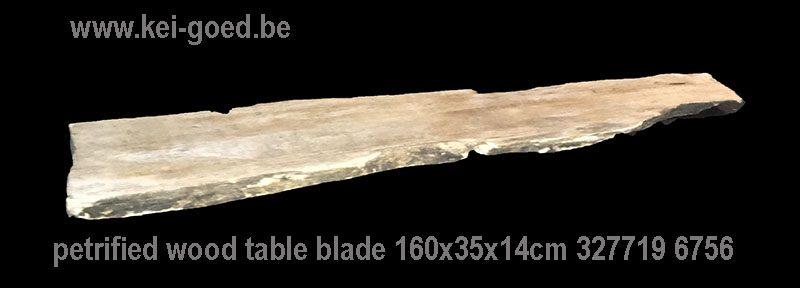 Petrified wood side table blade