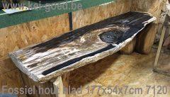 blad versteend hout met Christal