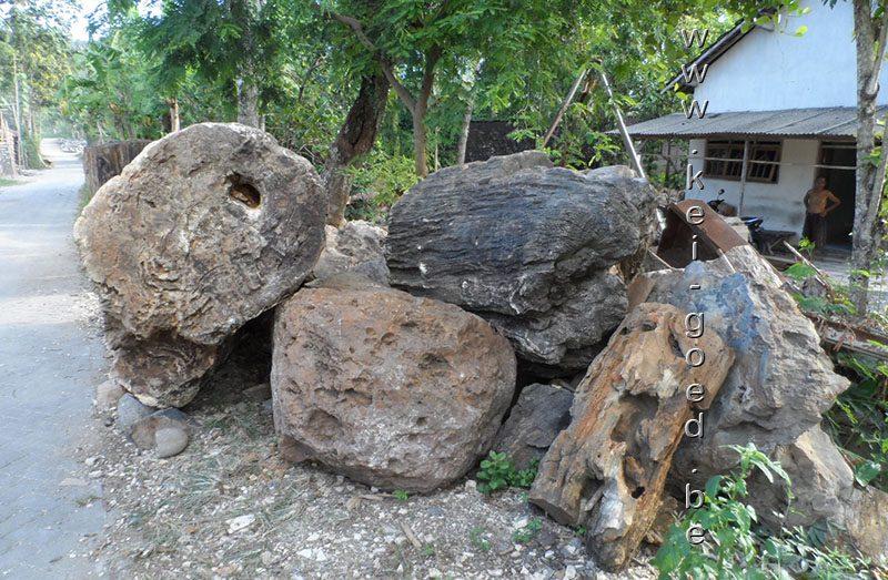 versteend hout stock