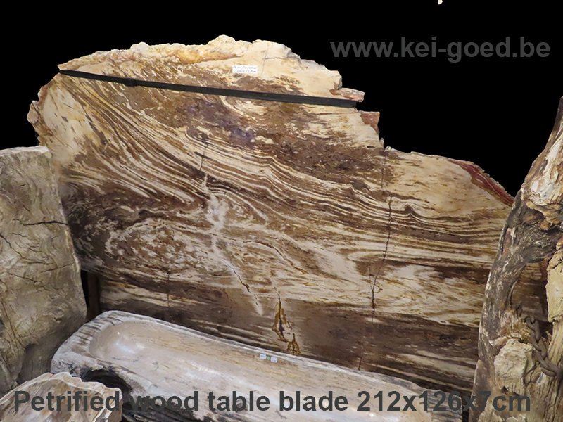 large petrified wood table top