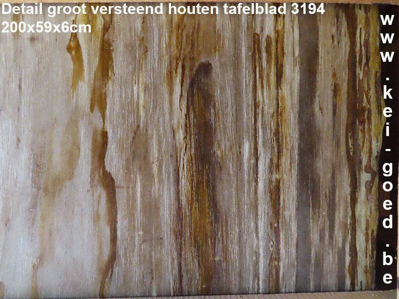 groot versteend houten tafel plaat