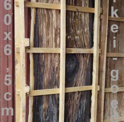 versteend hout boom zwart structuur