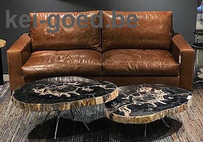 salontafelblad van versteend hout
